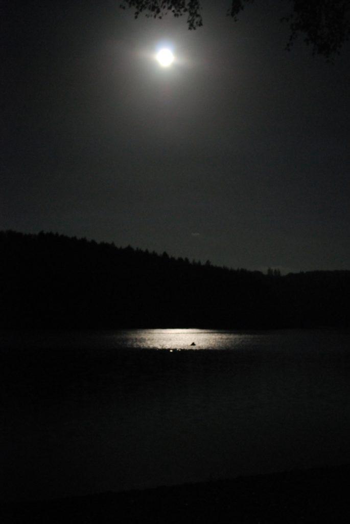 sk-nachttauchen_2012_09_29-01_